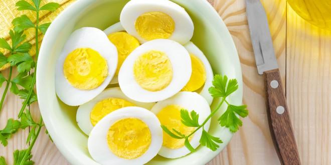 A verdade sobre os ovos -Tudo que os produtores de ovos comerciais não querem que você saiba