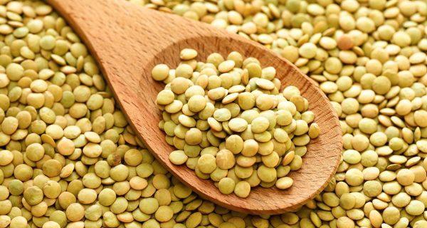 lentilha antinutrientes ano novo