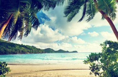 motivo para você ir a praia vitamina D sol
