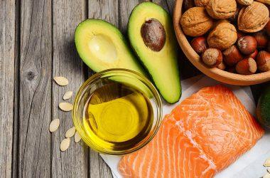 gordura saturada mito