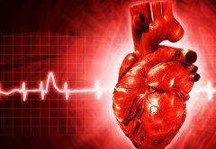 coração associação brasileira de cardiologia