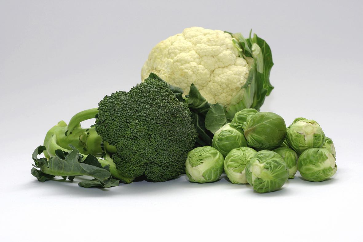 Vitamina K2: o nutriente-chave para a saúde