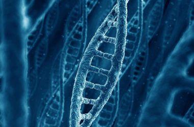 testes genéticos