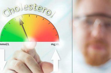 colesterol na dieta